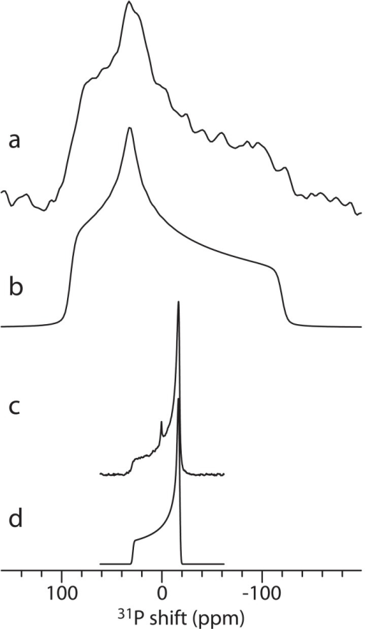 Experimental (a) and simulated (b) 31P powder NMR spectra of lyophilized DMPC.Experimental (c) and simulated (d) 31P static powder NMR spectra of DMPC vesicles. The peak at 0 ppm in (c) originates from the phosphate buffer.