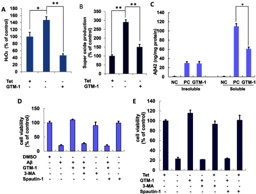 Protective effects of GTM-1 in neuroblastoma cells.A–C, MC65 cells were grown in the presence (Tet+) or absence (Tet−) of tetracycline and under Tet− with GTM-1 for 24 hrs, and assessed for: (A) H2O2 production, (B) superoxide production. C, The effect of GTM-1 on the insoluble or soluble Aβ oligomers level were assessed using ELISA in MC65 cells 72 hrs after tetracyline withdrawal (C). Cells incubated with tetracycline (Tet+) were used as a negative control (NC), and cells cultured without tetracycline (Tet−) were used as a positive control (PC). D, SH-SY5Y cells were incubated with the indicated compounds for 24 h. The cell viability was assayed using the MTT assay. Aβ, Aβ42 (30 µM), 3-MA (10 µM), spautin-1 (10 µM), GTM-1 (20 µM). Cells treated with vehicle (0.1% DMSO) were used as a negative control (NC). E, MC65 cells were grown in the presence (Tet+) or absence (Tet−) of tetracycline and under Tet− with the indicated compounds for 24 hrs, and the cell viability was assessed using the MTT assay. 3-MA (10 µM), spautin-1 (10 µM), GTM-1 (20 µM). Cells cultured in the presence of tetracycline (Tet+) were used as a negative control (NC). Stars indicated significant differences between the model group and control or treatment groups for specific time points. *P<0.05, **P<0.01.
