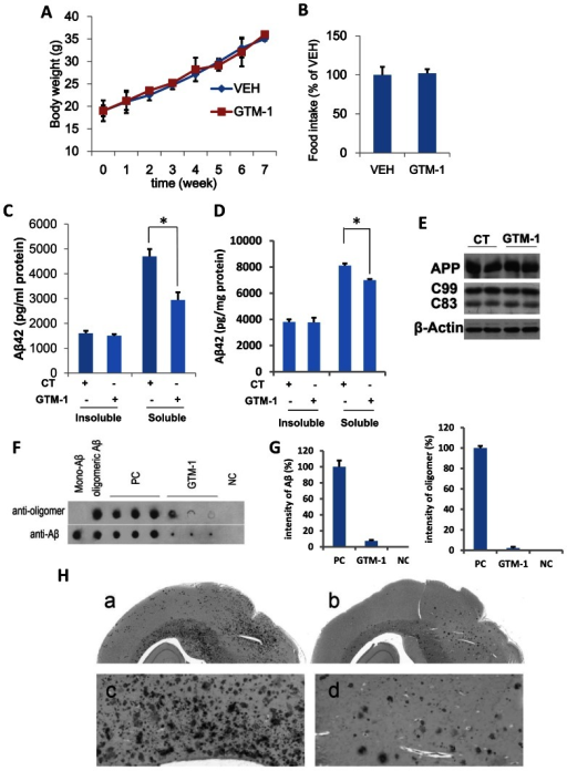 GTM-1 rescues Aβ and Tau pathology in AD mice.A–B, GTM-1 (6 mg/kg/day) or vehicle (VEH) was administered to five-month-old 3XTg-AD mice daily for 8 weeks. The average body weight (A) and total food consumed for 8 weeks (B) was recorded. C–D, F–G, 5-month-old 3XTg-AD mice (C, D) or 15-month-old 3XTg-AD mice (F, G) were treated with GTM-1 (3 mg/kg/day) daily for 8 weeks. The insoluble and soluble Aβ42 (C, D) levels were measured using a sandwich ELISA. E, Brain proteins were obtained from 8 different 3xTg-AD mice treated with GTM-1 and 8 different 3xTg-AD mice treated with vehicle after 8 weeks of treatment. The endogenous expression of APP, C99 and C83 were assessed using western blotting analyses. CT (control treatment) mice fed with a normal (vehicle) diet. Stars indicate significant differences between the model group and control or treatment groups for that time point. *P<0.05, **P<0.01. F, Five-month-old 3XTg-AD mice were treated with GTM-1 (6 mg/kg/day) or vehicle (PC, positive control) for 2 months. The brain sample from non-Tg mice with the same generic background was used as a negative control (NC). Soluble fractions extracted from brain samples were applied onto Hybond C-extra membrane. Next, the bound oligomeric Aβ and mono-Aβ on the membranes were detected using mono-Aβ specific antibodies, and oligomer-specific antibodies, respectively. Commercial soluble Aβ monomers and oligomeric Aβs produced from the monomer were spotted as indicated and used as another control. G, Densitometric analysis of the immune dot-blot experiments was performed using a high-resolution scanner, and the average intensity of each group was normalized using the average PC result. H, Five-month-old 3XTg-AD mice were treated as previously. Representative sections obtained from the brains of mice treated with GTM-1 and vehicle were immunostained using an Aβ-specific antibody.