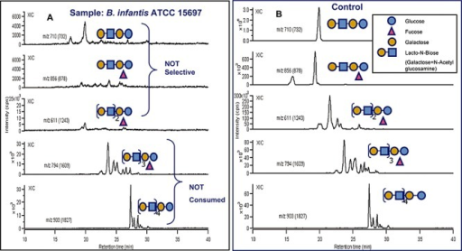 HPLC‐Chip/TOF‐MS analysis of selectivity for specific glycan structures consumed by B. infantis ATCC 15697. Shown are nanoLC extracted ion chromatograms (XIC) of selected milk glycans recovered (A) after incubation with B. infantis ATCC 15697 and (B) before incubation (control). The complete disappearance (A) of all glycan peaks for specific oligosaccharide (m/z: 732, 878 and 1243) indicates that B. infantis consumes specific HMOs but does not discriminate for any specific isomers within each group of HMO consumed.