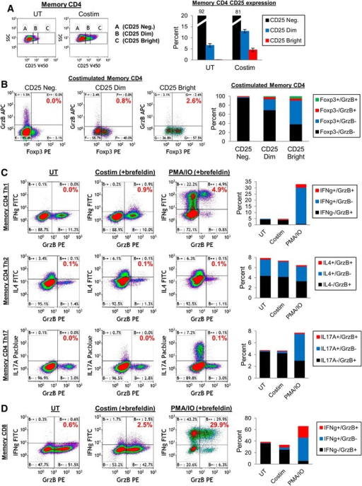 GrzB production by memory CD4 T cell subsets and coexpression with cytokines. (A-B) GrzB expression by Tregs. Memory CD4 T cells were purified from peripheral blood, and 5×105 cells (in 1ml medium) were untreated (UT) or activated (CD3/CD28 costimulation) for 24 hrs. Cells were then stained for CD25, Foxp3, and GrzB. (A) CD25 expression levels (Negative, Dim, or Bright) by memory CD4 T cells after 24 hrs culture (mean ± sem, n = 3). (B) Foxp3/GrzB expression by CD25-Negative, CD25-Dim, or CD25-Bright memory CD4 T cells after 24 hrs culture. Graph shows the mean (n = 3) distribution of Foxp3/GrzB subsets gated on CD25-Negative, -Dim, or -Bright cells. (C) GrzB coexpression with IFNγ, IL4, or IL17A by memory CD4 T cells. Memory CD4 T cells (5×105 cells in 1ml medium) were untreated for activated (CD3/CD28 costimulation or PMA/IO in the presence of brefeldin) for 24 hrs, then stained for GrzB and either IFNγ, IL4, or IL17A. Graphs show the mean (n = 3) distribution of cytokine/GrzB subsets. (D) GrzB/IFNγ coexpression by memory CD8 T cells. Purified memory CD8 T cells (5×105 cells in 1 ml medium) were untreated or activated (CD3/CD28 costimulation or PMA/IO in the presence of brefeldin) for 24 hrs. Graph shows the mean (n = 3) distribution of IFNγ/GrzB subsets.