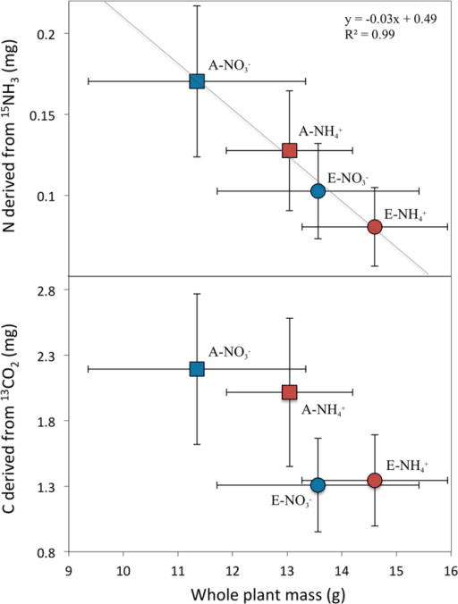 Relationship between whole plant mass measured at the end of phase I and total amount of labelled nitrogen and carbon assimilated by leaves during phase II.The line shows a significant (P < 0.05) negative relationship between total biomass accumulation and foliar uptake of NH3, which was independent of foliar area and plant nitrogen content (Supp Fig 1). This relationship was not significant for assimilation of a pulse of CO2 (R2 = 0.74), which mainly responded to changes in stomatal conductance produced by a history of ambient or elevated CO2. Error bars represent standard errors of the mean.
