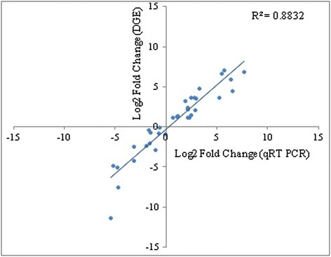 Correlation of DGE- and qRT-PCR-based expression profiles of transcripts. Expression profiles of 35 transcripts that are related to specialized metabolism were selected for the analysis. Data are presented as log2FoldChange (leaf vs root). qRT - PCR data represents average of three biological replicates. Differential transcript expression determined by qRT - PCR in root and leaf tissues was statistically evaluated either at P<0.05 or P<0.01