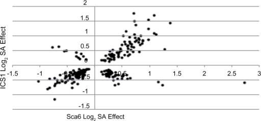 Gene induction differences in Sca6 and ICS1. X-axis represents log2 expression change in SA-treated versus water-treated Sca6 leaves, after obtaining the general linear model mean of differences across leaf stages. Y-axis represents log2 expression change in SA-treated versus water-treated ICS1 leaves, after obtaining the general linear model mean of differences across leaf stages. Points represent the 234 genes with statistically significant (BH P<0.05) expression changes in both genotypes.