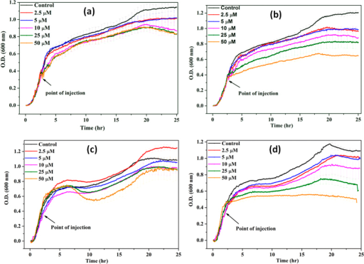 Growth kinetics of B. subtilis (Figs. 3a and 3b) and E. coli (Figs. 3c and 3d) in absence and presence of different concentrations of n-IONP (Fig. 3a for B. subtilis and 3c for E. coli) & p-IONP (Fig. 3b for B. subtilis and 3d for E. coli).Different concentrations of the NPs taken were 2.5, 5, 10, 25, and 50 μM, and injected at the log phase of growth kinetics (shown by arrow). Triplicate experiments were done for each reaction, and the error bar represents the standard error of mean.