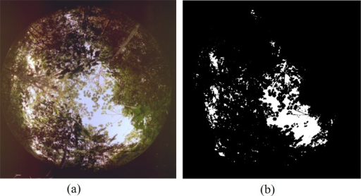 Illustration of (a) a hemispherical photograph of forest cover and (b) a binary image resulting from GLA analysis.