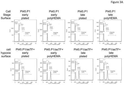Effect of asTF on cell cycle phasesA) Flow cytometry profiles of PT45.P1 cells transfected with asTF or vector after staining with propidium iodide to analyze the phases of the cell cycle. The plating conditions are indicated above each graph. B,C) Pt45.P1 and Pt45.P1/asTF+ cells were plated in triplicates in early stage (B) or advanced stage (C) environments and were analyzed for cell cycle stage via flow cytometry after propidium iodide staining. The percentage of cells in G2/M was assessed after plating in conventional cell culture dishes (plastic) or on poly(2-hydroxyethyl methacrylate) (poly-HEMA) to prevent cell adhesion. The comparison was done under early stage (D) or advanced stage (E) conditions. The error bars are SEM. * indicates significance at p < 0.05.