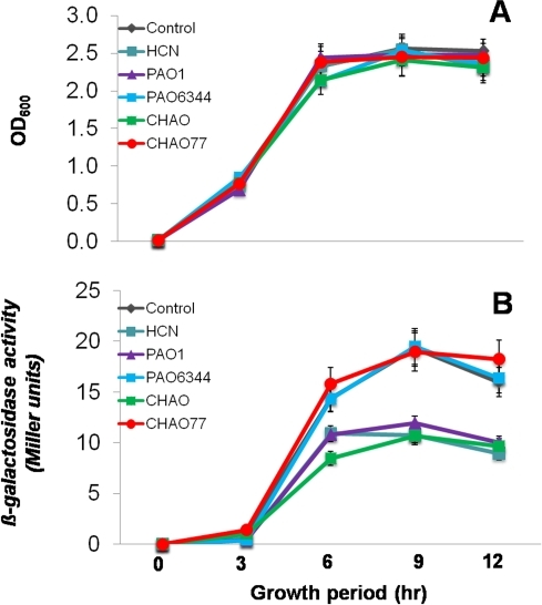 Effect of indirect exposure of the pseudomonad strains and cyanide on the transcription of the yqxM operon in B. subtilis.Strain Marburg thrC::yqxM-lacZ (NRS1531) was grown in biofilm medium under biofilm formation conditions at 37°C with or without exposure to pseudomonad strains and HCN. Growth (A) and β-galactosidase activity (B) were measured at regular intervals and plotted as a function of time. These experiments were repeated on at least 3 independent occasions and a representative plot is shown. Data is the mean±SD of 12 replicates and the experiment was repeated on two independent occasions.