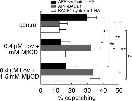 Effects of cholesterol depletion on microdomain association of APP and segregation between syntaxin 1 and BACE1 in N2a cells. Mild reduction of cellular cholesterol levels (0.4 μM lovastatin and 1 mM MβCD) caused a switching of APP's microdomain association without changing segregation between BACE1 and syntaxin 1. Further reduction (0.4 μM lovastatin and 1.5 mM MβCD) induced a loss of BACE1 segregation from syntaxin 1, which is consistent with the requirement of intact cholesterol-dependent microdomains for BACE1 exclusion. Data are means + SD based on three independent experiments (n = 31–39). **, P < 0.01.
