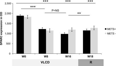 SPARC during VLCD 16-week 450 kcal/day in subjects with (METS+) and without (METS−) the metabolic syndrome. Data from SPARC adipose tissue expression of subjects of both groups were compared with their baseline levels (top) and the within-patient variation with the previous time point. R, refeeding; W, week. **P < 0.01, ***P < 0.001, n = 24.