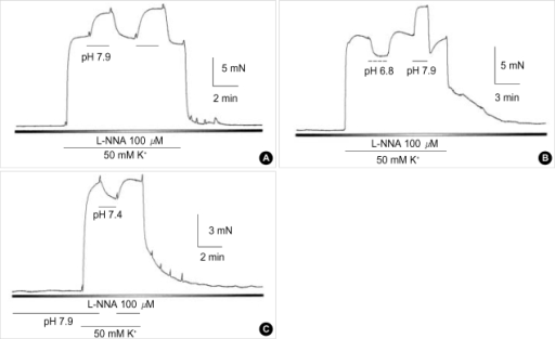 Effects of the repetitive alteration of pHo on high K+-induced contraction in rabbit basilar artery. Modulatory effects on high K+-induced contraction by the alteration of pHo was monitored by repetitive changes of pHo in rabbit basilar artery. (A) 50 mM of high K+-induced tonic contraction was repeatedly increased by pHo 7.9. (B) Acidotic and alkalotic conditions were induced to 50 mM of high K+-induced tonic contraction. Each condition of pHo 6.8 and 7.9 in a same tissue decreased and increased tonic contraction, respectively, in a reversible manner. (C) In the presence of L-NNA, enhancing effects of alkalotic condition on high K+-induced tonic contraction was studied by pre-application of pHo 7.9. Tonic contraction induced by application of 50 mM of high K+ solution (pHo 7.9) was decreased by post application of normal pH (pH 7.4).