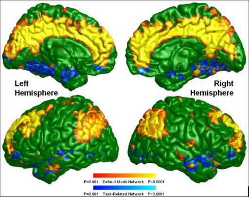 Default mode and task-related maps for ultra-high risk subjects. On a green background, the default mode network is highlighted in warm colors (red and yellow) and the task-related network is highlighted in cold colors (blue and light blue) depending on the p-value of one sample t-test.