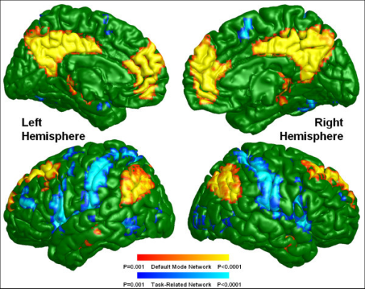 Default mode and task-related maps for healthy controls. The color codes for default mode and task-related networks are the same as for Figure 1.