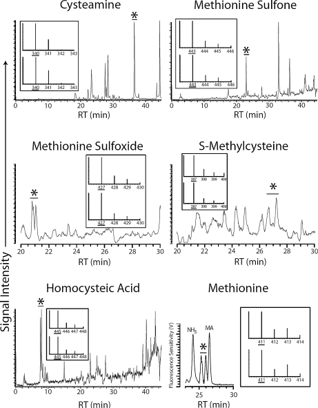 Sample chromatogram and mass spectra traces for 6 sulfur compounds detected in Miller's original sample extracts. All chromatogram traces displayed resulted from selective ion monitoring analysis except the methionine chromatogram trace, which was produced by HPLC-UV analysis. The chromatograms obtained by selective ion monitoring are plotted as signal intensity versus time, whereas the methionine chromatogram obtained by HPLC-UV is plotted as fluorescence sensitivity versus time. In each chromatogram, the asterisk demarcates the detection of the species in question. The mass spectra traces that accompany each chromatogram were obtained using ToF-MS analysis and are plotted as spectral intensity versus mass. Mass spectra traces were used to verify the sulfur distribution of the organosulfur species identified during selective ion monitoring. In all cases, the bottom mass spectra trace is the standard trace and the top mass spectra trace is the experimental trace. In each mass spectra trace, the underlined mass is the parent mass in question. Note: RT is retention time and MA is methylamine