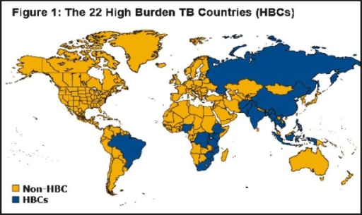 The 22 high burden TB countries in the word (Source: Kaiser Family Foundation, www.GlobalHealthFacts.org, based on WHO, Global tuberculosis control 2010, Slide Date: March 04, 2011; reprinted with permission from the Henry J. Kaiser Family Foundation, California, USA).