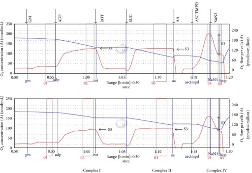 Tracings from the OROBOROS-high-resolution respirometry of permeabilized cells. Legend: the upper tracing represents a cell sample incubated with placebo (control) for 24 hours; the lower tracing represents a cell sample at the same passage number incubated with 1 μg/mL LPS for 24 hours. The experiments were recorded simultaneously. The blue line represents oxygen concentration; the red line represents the oxygen flow (slope of oxgygen concentration). GM: Glutamate + malate, ADP: adenosine diphosphate, ROT: rotenone, SUC: succinate, AA: antimycin A, ASC TMPD: ascorbate + N,N,N′,N′-tetramethyl-p-phenylenediamine, NaN3: sodium azide, and S3: state 3. State 4 cannot be measured due to the saturating concentration of ADP during the experiment.