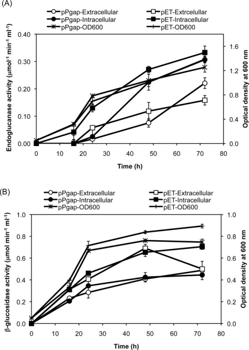 Time profiles of anaerobic cellulase expression under the constitutive gapA promoter and the inducible T7 promoter.Cells were grown anaerobically and used to monitor the (A) endoglucanase and (B) β-glucosidase activity in both the extracellular and intracellular fractions. The data are presented as the average and standard deviation of two independent experiments.