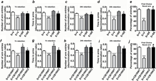 P7 ethanol treatment impairs and SR pretreatment rescues impaired spatial memory performance as measured by the Y maze. Discrimination ratio (preference for the novel arm over the familiar or other arm: Novel/Novel + Other) for arm entries (a and c) and dwell time (b and d) of S+V- and E+V-treated mice with or without SR in the Y maze at 1h and 24h after the first encounter with the partially-opened maze. The dashed line indicates chance performance (0.5). (e) The percentage of animals selecting the novel arm as the first choice is shown for S+V- and E+V-treated mice with or without SR at 1h and 24h after the first encounter with the partially-opened maze. Each point is the mean ± SEM (n = 8 mice/group). Two-way ANOVA with Bonferroni's post hoc test: ***p < 0.001 vs. S + V; #p < 0.05 vs. E + V. Discrimination ratio (preference for the novel arm over the familiar or other arm: Novel/Novel + Other) for arm entries (f and h) and dwell time (g and i) of S+CB1RWT, E+CB1RWT, S+CB1RKO, and E+CB1RKO mice in the Y maze at 1h and 24h after the first encounter with the partially-opened maze. The dashed line indicates chance performance (0.5). (j) The percentage of animals selecting the novel arm as the first choice is shown for S+CB1RWT, E+CB1RWT, S+CB1RKO, and E+CB1RKO mice at 1h and 24h after the first encounter with the partially-opened maze. Each point is the mean ± SEM (n = 8 mice/group). Two-way ANOVA with Bonferroni's post hoc test: ***p < 0.001 vs. S + V; #p≤ 0.01 vs. E ± V; $ p ≤ 0.01 vs. S ± CB1RWT; @ p ≤ 0.01 vs. S ± CB1RWT.