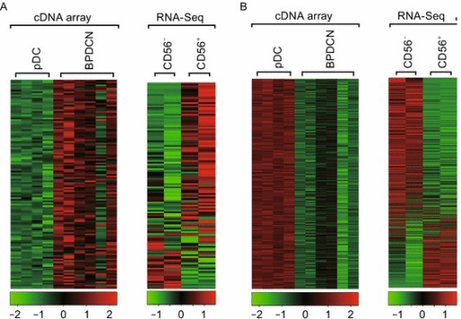 Global gene expression of BPDCN, pDCs and CD56+DCs. (A) Heat map of 127 genes highly expressed in BPDCN comparing with pDCs by cDNA array (left panel) and their expressions in CD56+ DCs relative to CD56− pDCs by RNA-Seq (right panel). (B) Heat map of 1143 genes highly expressed in pDCs comparing with BPDCN by cDNA array (left panel) and their expressions in CD56+ DCs relative to CD56− pDCs by RNA-Seq (right panel)