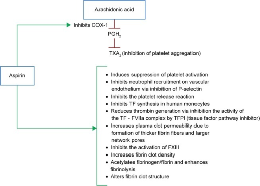 Mechanisms of antithrombotic effects of aspirin.Abbreviations: PGH2, prostaglandin H2; TXA2, thromboxane A2; COX-1, cyclooxygenase-1; TF, tissue factor; TFPI, tissue factor pathway inhibitor.