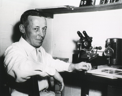 <p>Horizontal picture, body to right, full face, seated at laboratory table, holding slide in one hand; microscope and other medical apparatus on table.</p>