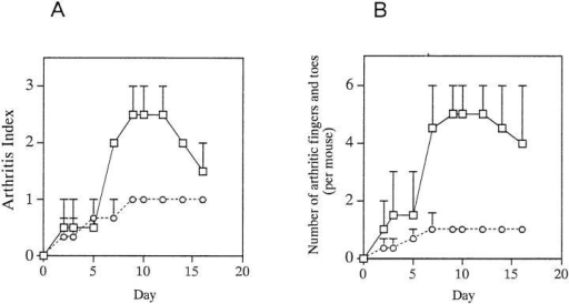 Adoptive transfer of arthritis in IRF-1+/− and IRF-1−/−  DBA/1 mice. A CII-reactive cell line together with sera from arthritic  mice was injected into naive mice as described in Materials and Methods.  Arthritis index (A), and number of fingers and toes with arthritis (B), were  evaluated. Arthritis index and number of arthritic fingers and toes were  decreased in IRF-1−/− mice (circles) after day 7 (P <0.05 and P <0.01, respectively) as compared with those in IRF-1+/− mice (squares). In this experiment, all IRF-1+/− and IRF-1−/− mice developed arthritis. A representative result from a total of three experiments is shown.