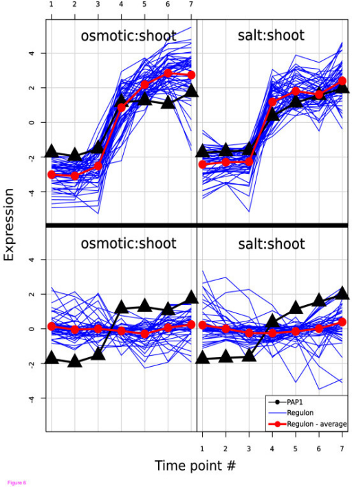 The PAP regulon. Comparison of the expression of the CERMT predicted regulon (upper panel) and the over-expression defined regulon [47] (lower panel) versus the expression of the PAP1 transcription factor in the shoot in response to salt and osmotic stress. No time lag was used for the prediction, so there is no overlap between predicted and true regulons. The difference in terms of coherency and variance is pronounced so it is not hard to see why the algorithm is seeded with no time lag instead of the more appropriate lag of two time points. This illustrates an unavoidable problem of TF target prediction based only on gene expression data – there are no unique solutions and the most obvious solution is not necessarily the correct one.
