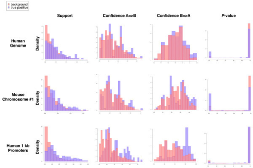 Distributions of support, confidence, and P-value for true positives and all pairs. Distribution histograms of support, confidence, and P-value for 131 true positives versus all pairs show higher support and confidence and lower P-values for true positives in the entire human genome, human promoter regions, and mouse chromosome 1.