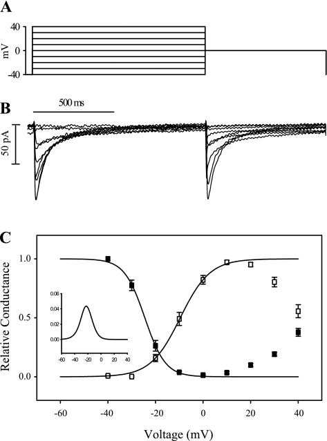 Steady-state activation and inactivation of ICa in varanid lizard ventricular cardiac cardiomyocytes. A: voltage protocol used to measure steady-state activation and inactivation. B: representative current recording from a varanid ventricular myocyte (capacitance = 56.2 pF) subjected to the voltage protocol given in A. C: mean steady-state inactivation and activation profiles. Values are means ± SE (n = 12). Inactivation (▪) is measured by depolarizing from −70 mV to a test potential for 1 s and then testing the remaining available ICa at 0 mV. Activation (□) is calculated by dividing peak current by apparent driving force [applied membrane potential (Em) − reversal potential (Erev)] according to Ohm's law. Inset: l-type Ca2+ channel window current (product of activation and inactivation at each voltage).