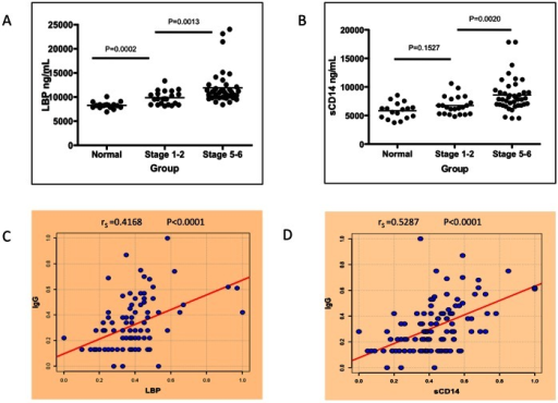 Peripheral markers of LPS exposure in patients with liver fibrosis correlate with the level of LRAGG.A) There is a statistically significant increase in the level of LPS Binding Protein (LBP) detected in the sera of patients with mild liver fibrosis (P = 0.0002) and also as a function of liver cirrhosis (P = 0.0013). B) A similar increase is seen in soluble CD14 (sCD14) with the progression of liver fibrosis to liver cirrhosis (P = 0.0020). C) There is a direct correlation between LBP and LRAGG (rS = 0.4168, P<0.0001) and between sCD14 and LRAGG (rS = 0.5287, P<0.0001) (D). rS denotes the Spearman's correlation coefficient. For panels A & B, samples size is Normal, n = 20; Stage 1–2, n = 21; and Stage 5–6 (Cirrhosis), n = 39.