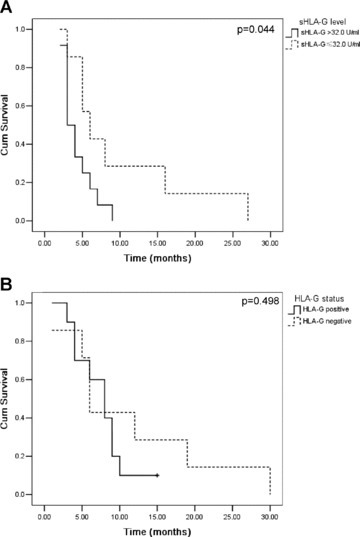 Kaplan–Meier estimates the survival curves for NSCLC patients with HLA-G expression in primary lesions (n= 51) or plasma sHLA-G (n= 67). (A) Patients with the sHLA-G above median level (32.0 U/ml) had a significantly shorter survival time than that with lower sHLA-G expression (P= 0.044). (B) No statistical significance was observed for the HLA-G expression in primary lesions and survival (P= 0.498).
