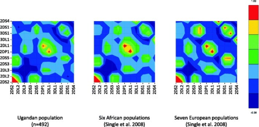 Comparison of the linkage disequilibrium observed in the KIR region between the Ugandan population and six African and seven European populations. The LD values calculated for 11 KIR gene loci for Ugandan population are compared with the values obtained using the same method by Single et al. (2008). Red represents strong positive LD, blue represents strong negative LD