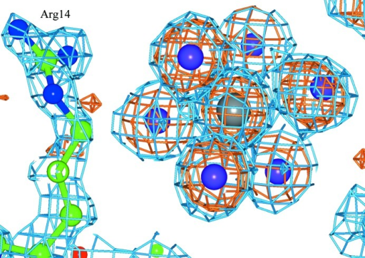 PtI6 binding in a special position between two Arg14 residues in symmetry-related molecules. The 2Fo − Fc electron-density map (blue) and the anomalous difference electron-density map (orange) are shown. The Pt atom is in grey and I atoms are in purple.