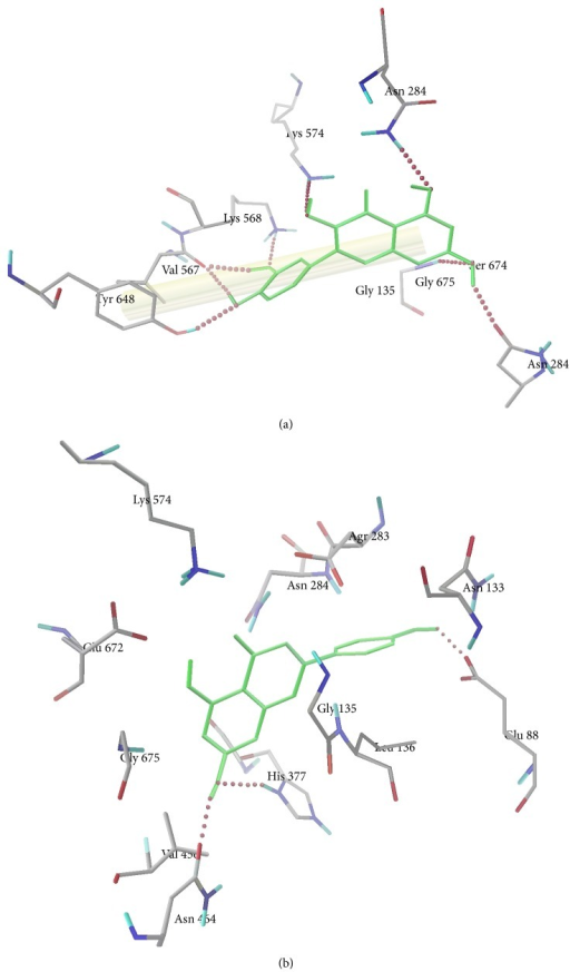 Hydrogen bond interactions between amino acid residues in the active site pocket of glycogen phosphorylase and (a) quercetin and (b) apigenin.