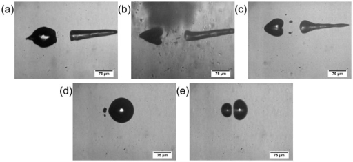 Snapshots of the bubble-to-bubble interaction within different sample media.Images show representative interactions after application of constant laser parameters in: (a) De-ionized water, (b) porcine vitreous body (increased artefacts due to inhomogeneities inside the biological tissue), (c) 1% gelatin solution, (d) 2% gelatin solution, and (e) 5% gelatin solution. The pulse energy Epulse corresponds to 8.5-times breakdown threshold Eth in water and the focus separation confirms to Δx = 46.1 µm. All pictures are taken at Δt = 13.6 µs. While (a), (b), and (c) show the typical interaction effects of mechanism 7, in (c) and (d) mechanism 2 conveys.