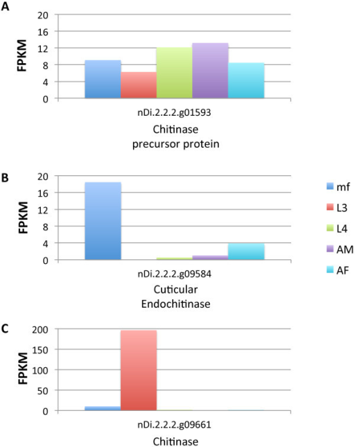 D. immitischitinase expression. Expression profiles (FPKM values) of the D. immitis chitinase precursor protein (A), cuticular endochitinase (B) and chitinase (C) genes.