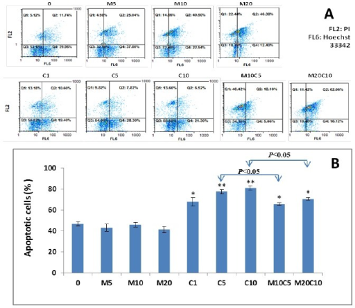 Effect of metformin, cisplatin and metformin/cisplatin on apoptosis in MKN-45 cells. A) Hoechst 33342 stains the condensed chromatin in apoptotic cells more brightly than the chromatin in normal cells and Propidium Iodide (PI) is only permeate to dead cells (FL2: PI, FL6: Hoechst 33342). As shown in figure, there is significant change in the apoptosis rate of metformin, cisplatin and metformin/cisplatin treated MKN-45 cells compared with the control. B) Quantified values of apoptosis in MKN-45 cell line treated with metformin, cisplatin and metformin/cisplatin. As shown in this figure, the cisplatin-induced apoptosis at concentration of 5 μM is significantly higher than the combination of metformin 10 /cisplatin 5. Statistically different values of *P<0.05 and **P<0.01 are determined compared with the control