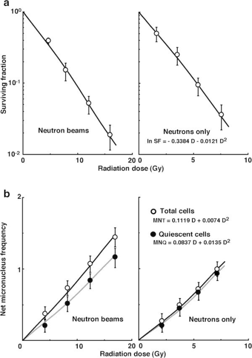 "Cell survival curves (a) and the net micronucleus (MN) frequencies (b) afterin vivoirradiation using neutron beams without the10B-carrier as a function of the physical radiation dose in total (open symbols) and quiescent (Q, (solid symbols)) tumor cell populations. The data for irradiation with reactor ""neutron beams"" and with ""neutrons only"" are shown at left and right panels, respectively. Bars represent standard errors (n = 9)."