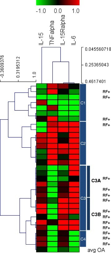 Cluster analysis of cytokines concentration in SF from RA patients. Hierarchical Cluster analysis of cytokines expression profiles obtained for 30 RA patients (Spearman rank correlation and single linkage algorithm). Dendrogram resulting from clustering the RA SFs (rows) identified four principal groups of patients (C1-C4). The most intense red blocks represent highly over-expressed cytokines and most intense green blocks represent the cytokines with greatest degree of under-expression. Black indicates cytokines whose expression is similar in the AR and OA reference samples. At the right side C3A and C3B denote two subclusters of cluster 3 showing different levels of IL-15Ralpha expression. RF+ indicates patients which are positive to Rheumatoid factor.