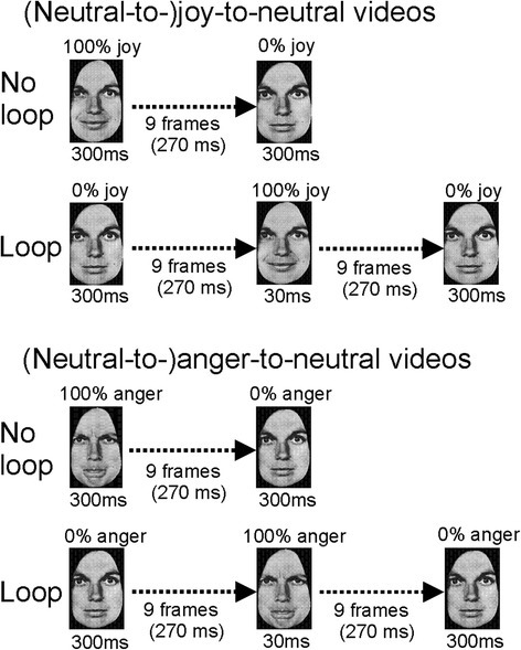 Illustration of the stimulus presentations in experiment 3. Top panel: Joy-to-neutral sequence in the control condition (top row) and neutral-to-joy-to-neutral sequence in the loop condition (bottom row). Bottom panel: Similar sequences but for anger-to-neutral (top row) and neutral-to-anger-to-neutral (bottom row)
