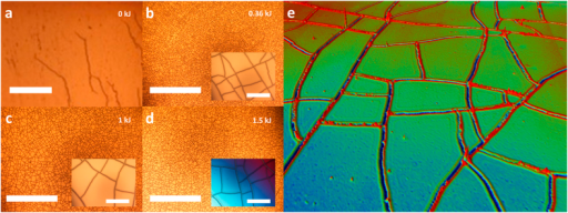 Optical microscope images of oxygen plasma treated PDMS samples following a chromium/gold (10 nm/100 nm) layer has been evaporated onto the surface.(a) no plasma treatment (scale bar = 500 μm), (b) Dose D = 360 J, the crack density N = 2.5 ± 0.3 × 108 m−2. (c) D = 1 kJ, N = 1.4 ± 0.2 × 108 m−2. (d) D = 1.5 kJ, N = 1.2 ± 0.2 × 108 m−2 (scales bars = 2000 μm) and (e) a 3D optical profile image of the mud-crack patterning following removal of the chromium/gold thin film. The insets to a-d show zoomed images of the cracks (Scale bars = 100 μm). The chromium/gold was evaporated over the whole 1 cm2 surface of the PDMS.