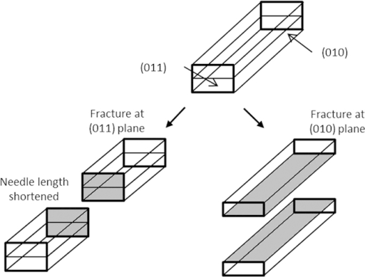 Diagram Illustrating The Fracture Planes For Mannitol C Open I