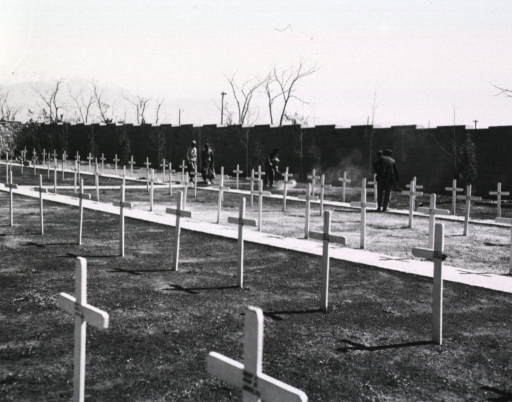 <p>Four men spray DDT amidst rows of graves marked by wooden crosses in a walled cemetery.</p>