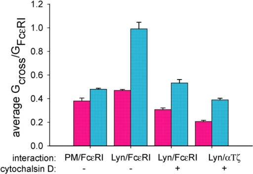 Average cross-correlation values before and after stimulation by antigen. Cells were stimulated by antigen in the absence or presence of 1 μM cytochalasin D. Error bars represent the SEM for PM-EGFP–FcɛRI (n = 3), Lyn-EGFP–FcɛRI (n = 7), Lyn-EGFP–FcɛRI with cytochalasin D (n = 4), and Lyn-EGFP–chimeric αTζ with cytochalasin D (n = 7).