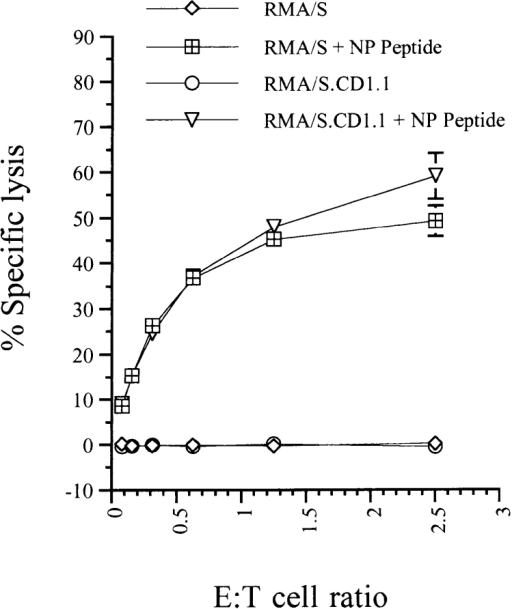 The mCD1.1 transfectant of RMA/S is not intrinsically resistant to cell-mediated  lysis. RMA/S and RMA/S.  CD1.1 cells were grown overnight at 26°C, then 51Cr-labeled  and pulsed with or without 400  μg/ml of NP peptide at 37°C for  1 h. The cells were then incubated with CTL clone 3/4 for 4 h  at various E/T ratios in triplicate.  Results are shown as means ±  SD. In all cases, the spontaneous  release values were <9.4%.  Identical results were obtained in  two additional experiments.