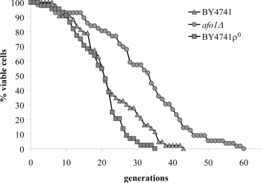 Lifespans of                                            isogenic strains afo1Δ, wild type                                            BY4741 and BY4741 ρ0. Lifespans were determined as                                            described previously [2] by micromanipulating daughter cells and counting                                            generations of at least 45 yeast mother cells on synthetic complete (SC)                                            media with 2% glucose as carbon source.