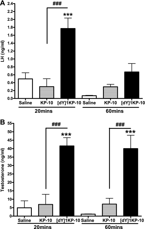Effect of ip administration of 0.15 nmol [dY]1KP-10 and KP-10 on plasma LH (A) and plasma total testosterone (B) in male mice at 20 and 60 min postinjection in vivo. ***P < 0.001 vs. saline, ###P < 0.001 vs. equimolar KP-10 (ANOVA with post hoc Tukey's adjustment); n = 4–7.