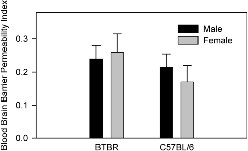 No difference in BBB permeability in BTBR mice relative to B6 mice.Evans blue solution (50 µg/g body weight) was injected into the peritoneum; 5 h later, peripheral blood was obtained through cardiac puncture. Brains from the perfused mice were incubated in formamide solution for 72 h for extraction of the dye, and the supernatants were collected through centrifugation. Optical density of plasma or brain supernatant sample was measured at 620 nm. No statistical significance was observed between BTBR and C57BL/6J mice. Brains were removed after PBS perfusion and weighed.