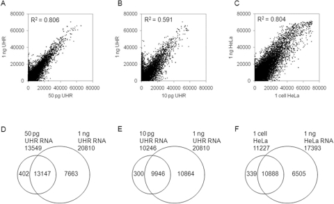 Intensity and detected probe concordance comparisons between low and higher 1 ng inputs.Raw signal intensity correlations between (A) 50 pg (x-axis) and 1 ng (y-axis) UHR total RNA; (B) 10 pg (x-axis) and 1 ng (y-axis) UHR total RNA; (C) single HeLa cell (x-axis) and 1 ng (y-axis) HeLa total RNA. The overlapping sets of detected probes between the low and higher inputs are shown for both the RNA equivalent (D, E) and single cell (F) inputs. All probe values shown are at a threshold of p<0.01.