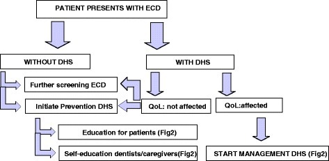 A Treatment decision tree for patients with exposed cervical dentine (ECD) (QoL = quality of life, DHS = dentin hypersensitivity)